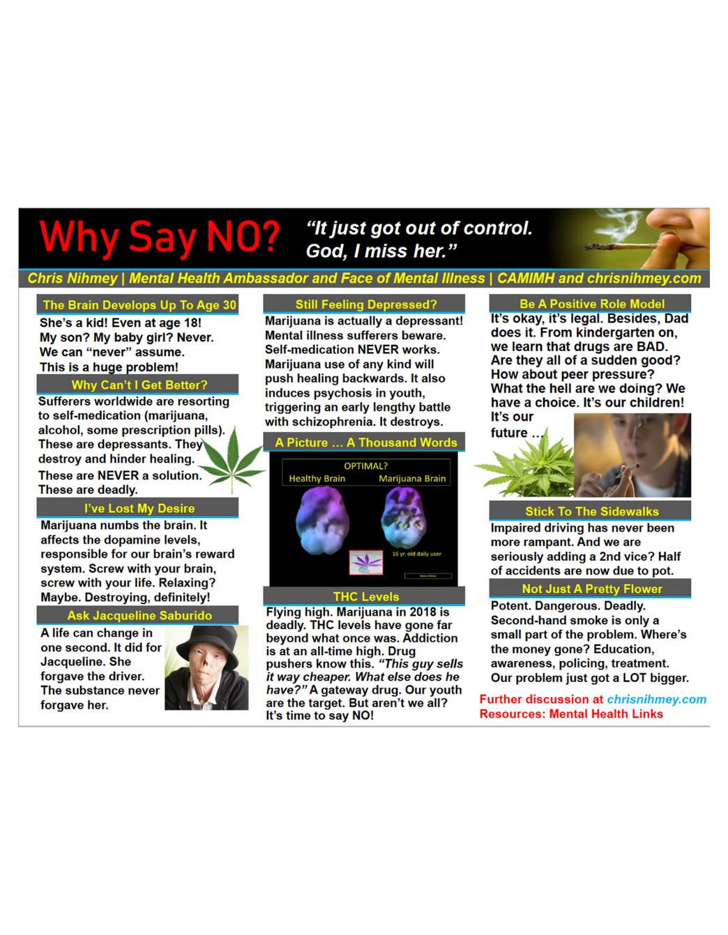 Anti-legalization Poster